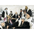 Costume cosplay Shinigami Bleach